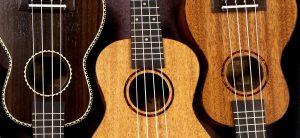 How to Buy A Ukulele: Things to know before buying your ukulele