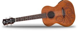 Ukulele for Left-Handers: Your Guide to Playing it the Right Way