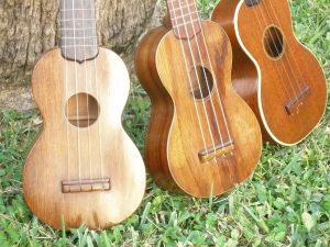 Different Ukulele Wood Types